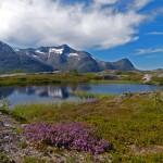 1 plass_Korgfjellet_Trond Nøstvik